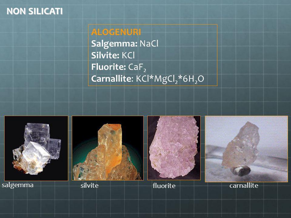 ALOGENURI Salgemma: NaCl Silvite: KCl Fluorite: CaF 2 Carnallite: KCl*MgCl 2 *6H 2 O salgemma silvite carnallite fluorite NON SILICATI
