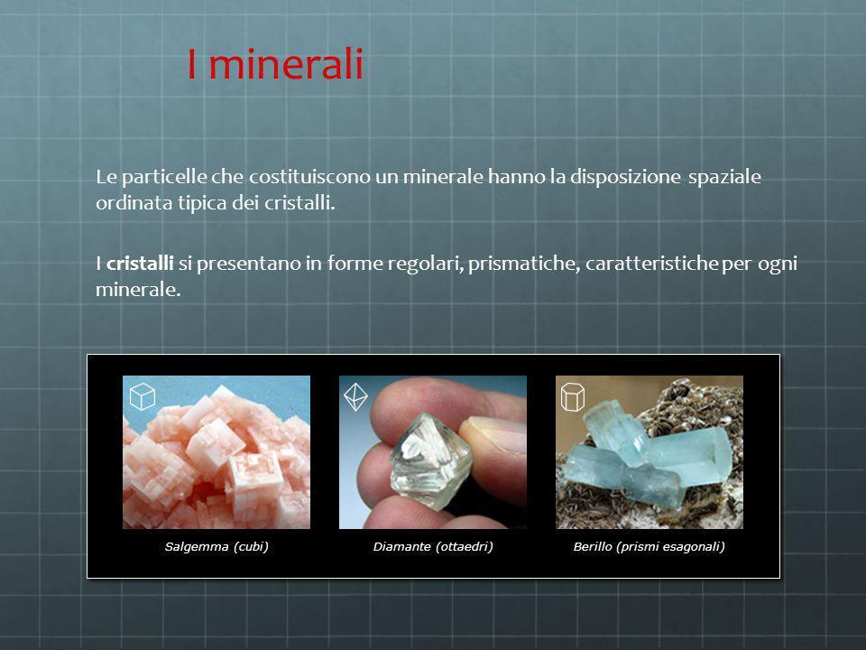 Le particelle che costituiscono un minerale hanno la disposizione spaziale ordinata tipica dei cristalli. Salgemma (cubi)Diamante (ottaedri)Berillo (p
