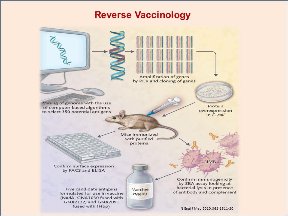 N Engl J Med 2010;362:1511-20. Reverse Vaccinology