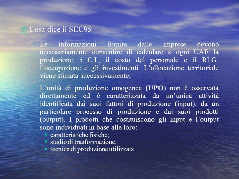 4Cosa dice il SEC95 Le informazioni fornite dalle imprese devono necessariamente consentire di calcolare x ogni UAE la produzione, i C.I., il costo de