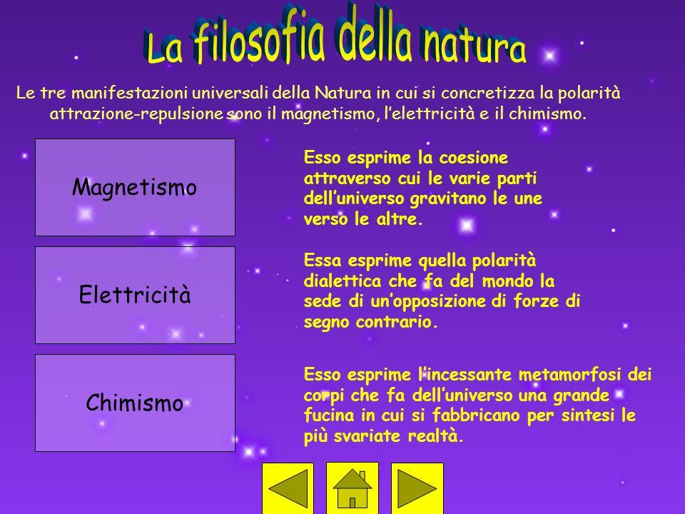 Le tre manifestazioni universali della Natura in cui si concretizza la polarità attrazione-repulsione sono il magnetismo, lelettricità e il chimismo.