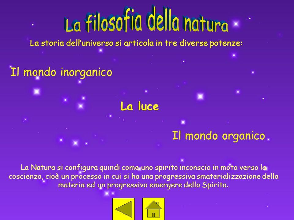 La storia delluniverso si articola in tre diverse potenze: Il mondo inorganico La luce Il mondo organico La Natura si configura quindi come uno spirit