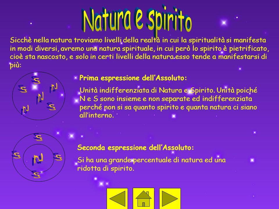 Sicchè nella natura troviamo livelli della realtà in cui la spiritualità si manifesta in modi diversi, avremo una natura spirituale, in cui però lo sp