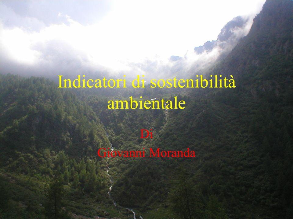 ESEMPI DI INDICATORI DI SOSTENIBILITA EROI C.J.