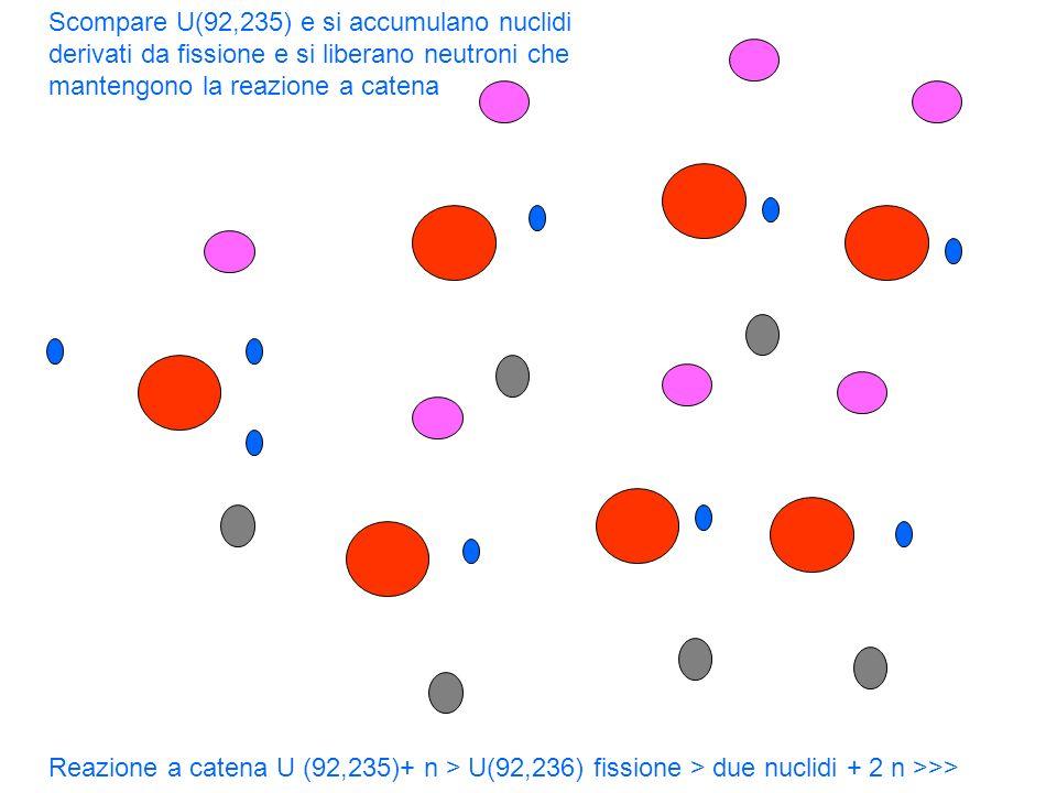 Reazione a catena U (92,235)+ n > U(92,236) fissione > due nuclidi + 2 n >>> Scompare U(92,235) e si accumulano nuclidi derivati da fissione e si libe