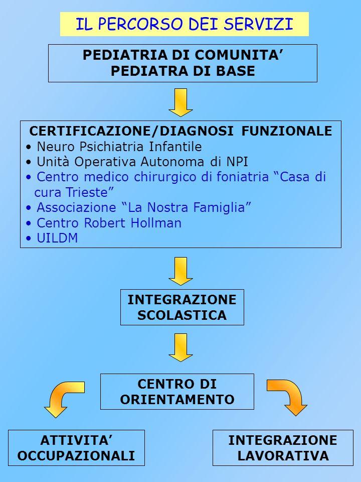 INTEGRAZIONE SCOLASTICA Famiglia Servizi Sanitari (NPI, pubblico, privato convenzionato...) Valutazione dellalunno in base alla L.