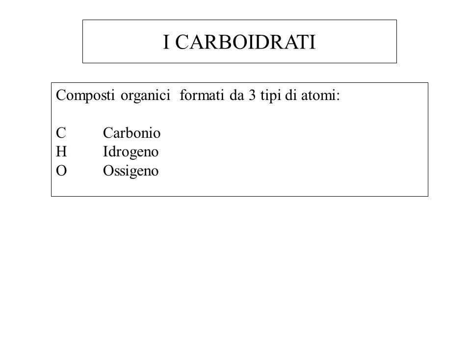 I CARBOIDRATI Composti organici formati da 3 tipi di atomi: C Carbonio H Idrogeno OOssigeno