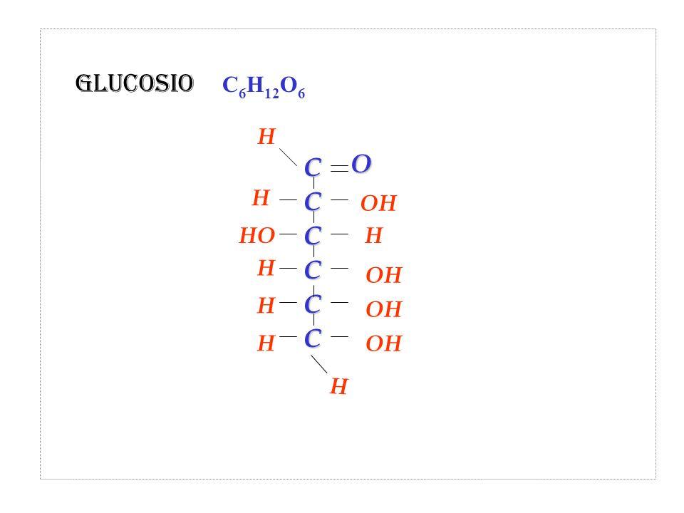 OH HO OH H H H H HO CC C C C C H Glucosio C 6 H 12 O 6 H