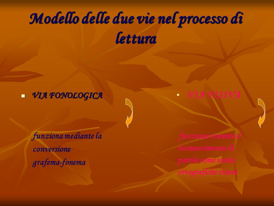 Modello delle due vie nel processo di lettura VIA FONOLOGICA VIA FONOLOGICA VIA VISIVA funziona mediante la conversione grafema-fonema funziona tramit