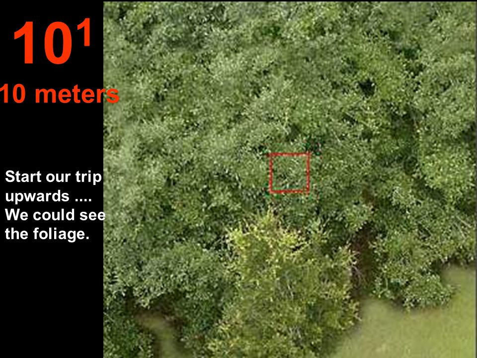 At this distance we can see the limits of the forest and the edifications 10 2 100 meters