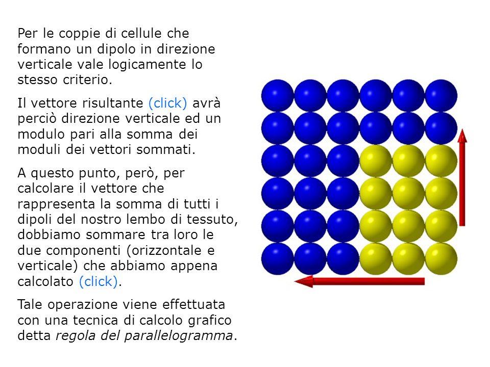 Per le coppie di cellule che formano un dipolo in direzione verticale vale logicamente lo stesso criterio. Il vettore risultante (click) avrà perciò d