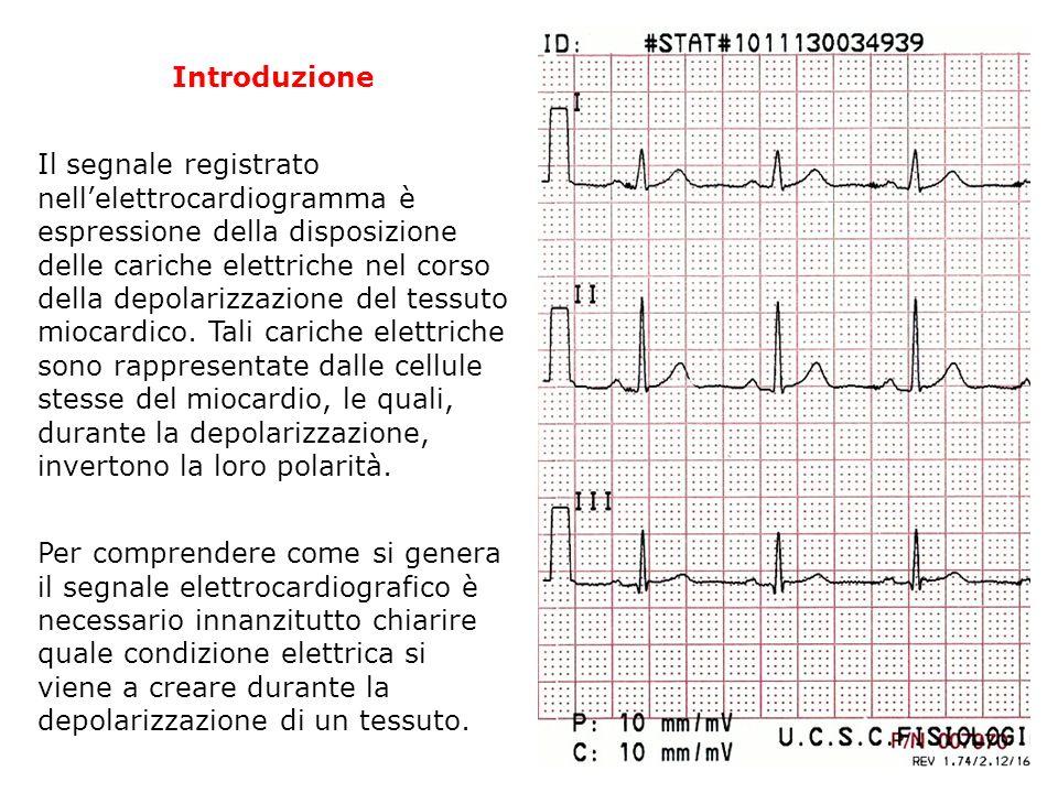 Introduzione Il segnale registrato nellelettrocardiogramma è espressione della disposizione delle cariche elettriche nel corso della depolarizzazione