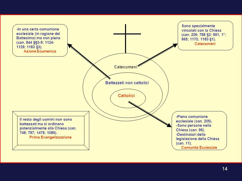 14 Catecumeni Battezzati non cattolici Cattolici -Piena comunione ecclesiale (can. 205). -Sono persone nella Chiesa (can. 96). -Destinatari della legi