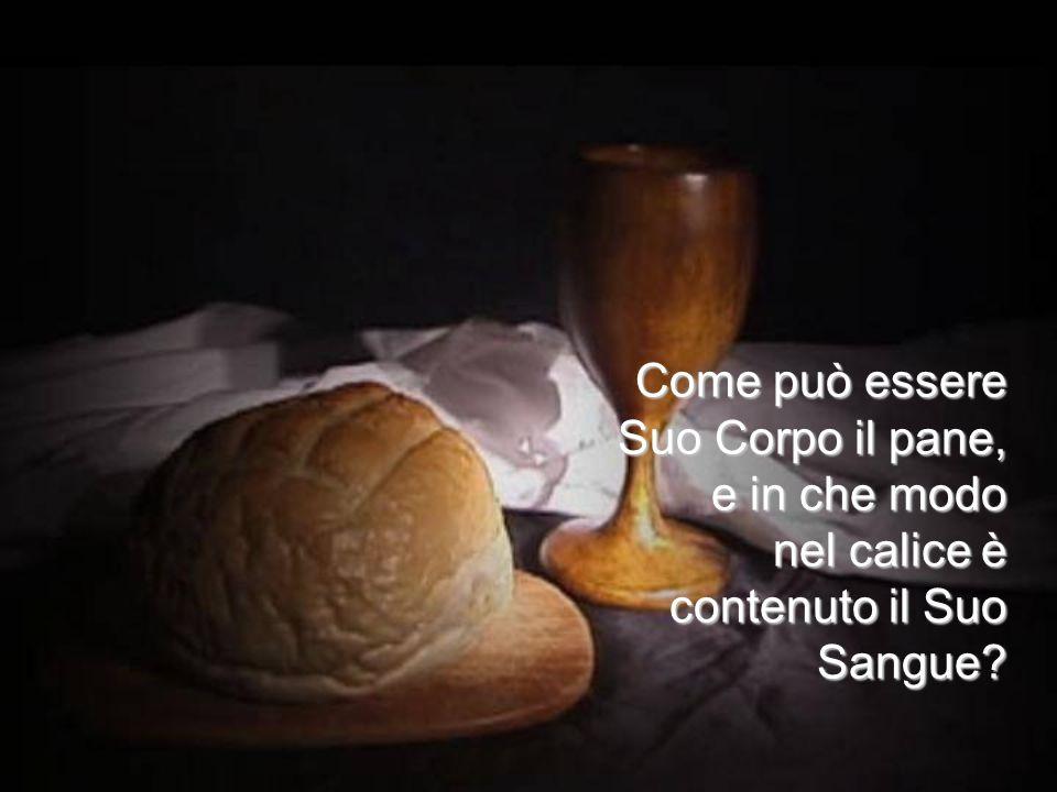 nel giorno che ha voluto è asceso al Cielo col suo corpo; di là verrà a giudicare i vivi e i morti, e ora siede là alla destra del Padre.