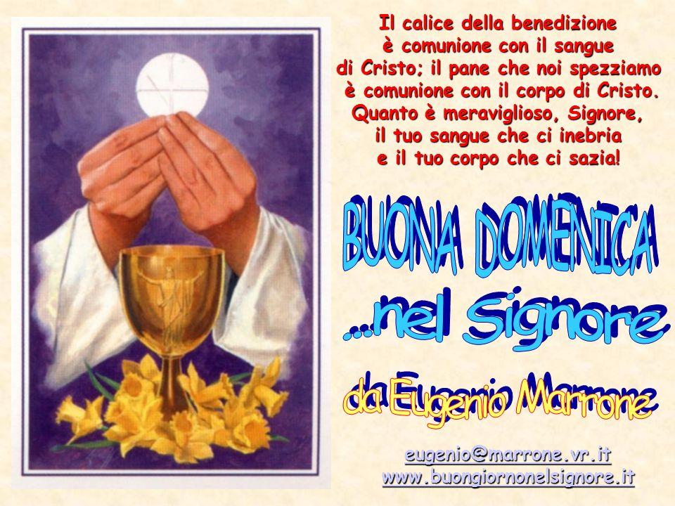 Il calice della benedizione è comunione con il sangue è comunione con il sangue di Cristo; il pane che noi spezziamo è comunione con il corpo di Crist