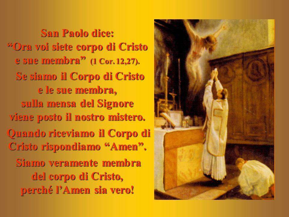 San Paolo dice: Ora voi siete corpo di Cristo e sue membra (1 Cor. 12,27). Se siamo il Corpo di Cristo e le sue membra, sulla mensa del Signore viene
