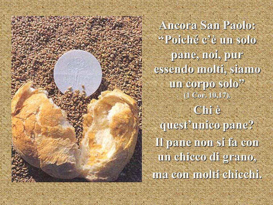 Ancora San Paolo: Poiché cè un solo pane, noi, pur essendo molti, siamo un corpo solo (1 Cor. 10,17). Chi è questunico pane? Il pane non si fa con un