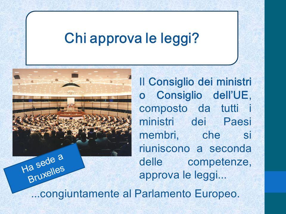 Chi approva le leggi? Il Consiglio dei ministri o Consiglio dellUE, composto da tutti i ministri dei Paesi membri, che si riuniscono a seconda delle c