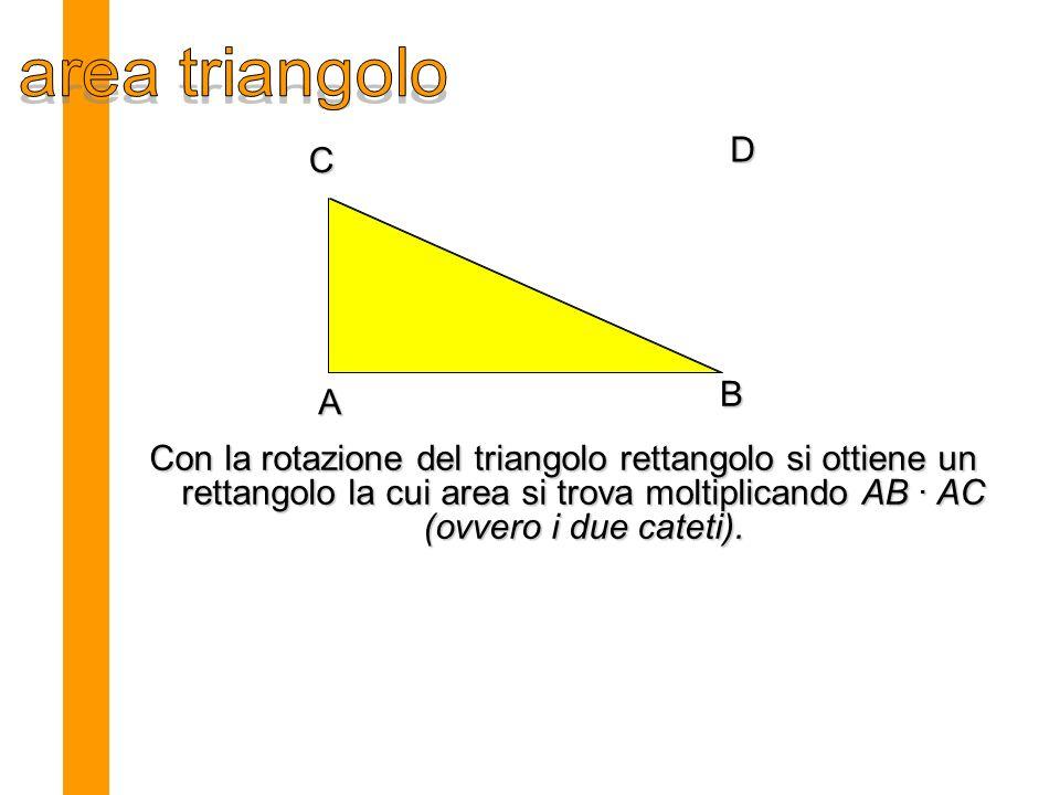 A B C D Con la rotazione del triangolo rettangolo si ottiene un rettangolo la cui area si trova moltiplicando AB · AC (ovvero i due cateti).