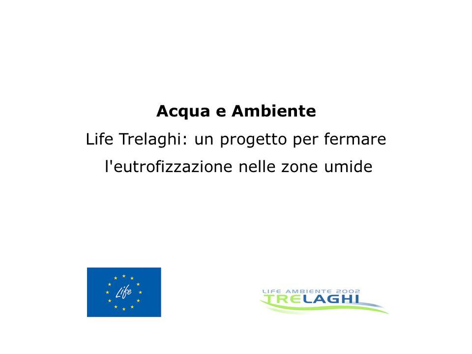 Acqua e Ambiente Life Trelaghi: un progetto per fermare l eutrofizzazione nelle zone umide