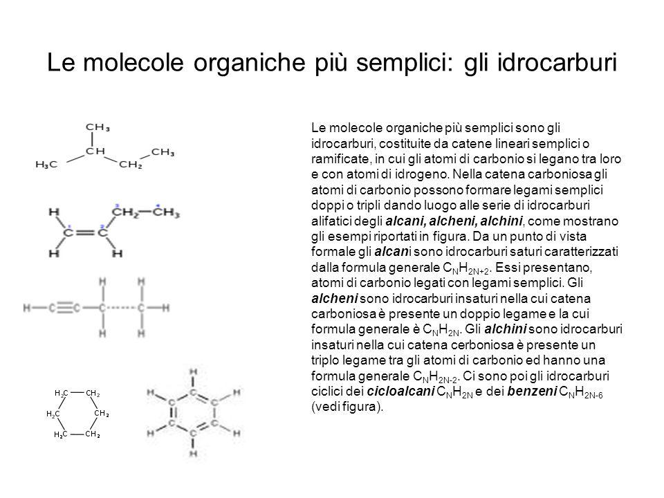 Le molecole organiche più semplici: gli idrocarburi Le molecole organiche più semplici sono gli idrocarburi, costituite da catene lineari semplici o r