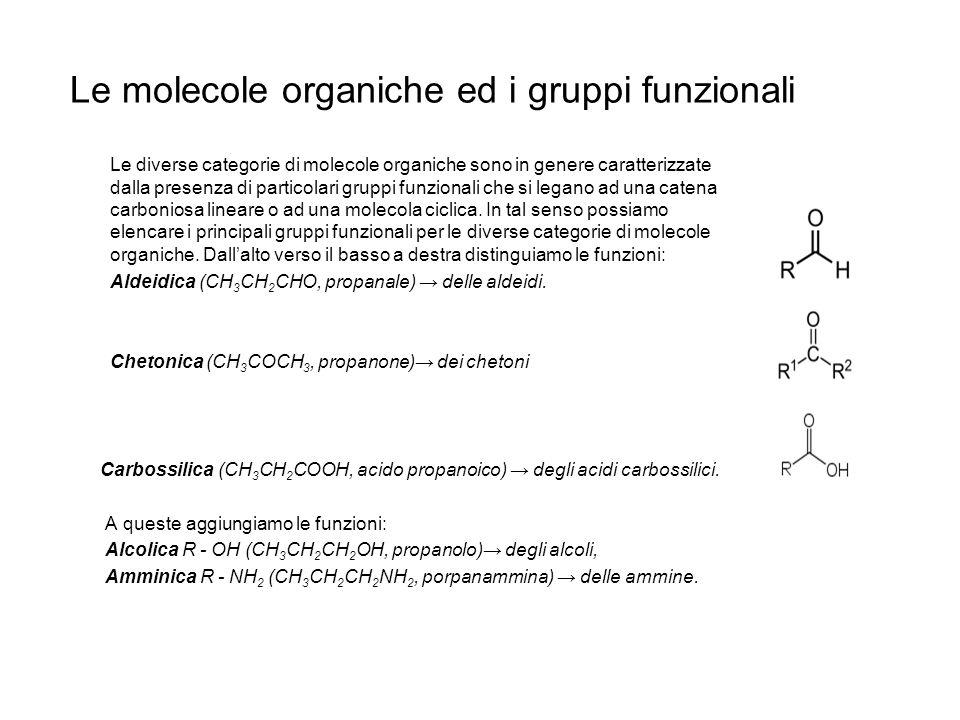 Le molecole organiche ed i gruppi funzionali Le diverse categorie di molecole organiche sono in genere caratterizzate dalla presenza di particolari gr