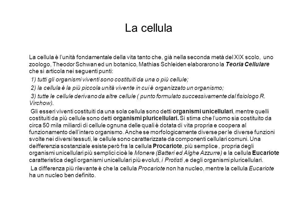 La cellula La cellula è lunità fondamentale della vita tanto che, già nella seconda metà del XIX scolo, uno zoologo, Theodor Schwan ed un botanico, Ma