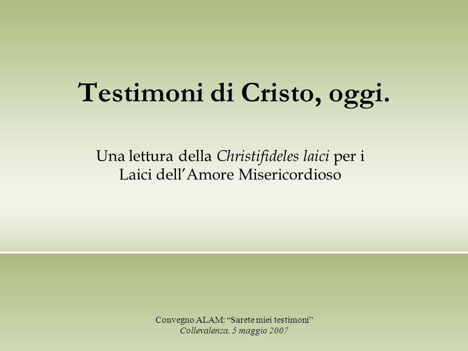 Testimoni di Cristo, oggi. Convegno ALAM: Sarete miei testimoni Collevalenza, 5 maggio 2007 Una lettura della Christifideles laici per i Laici dellAmo
