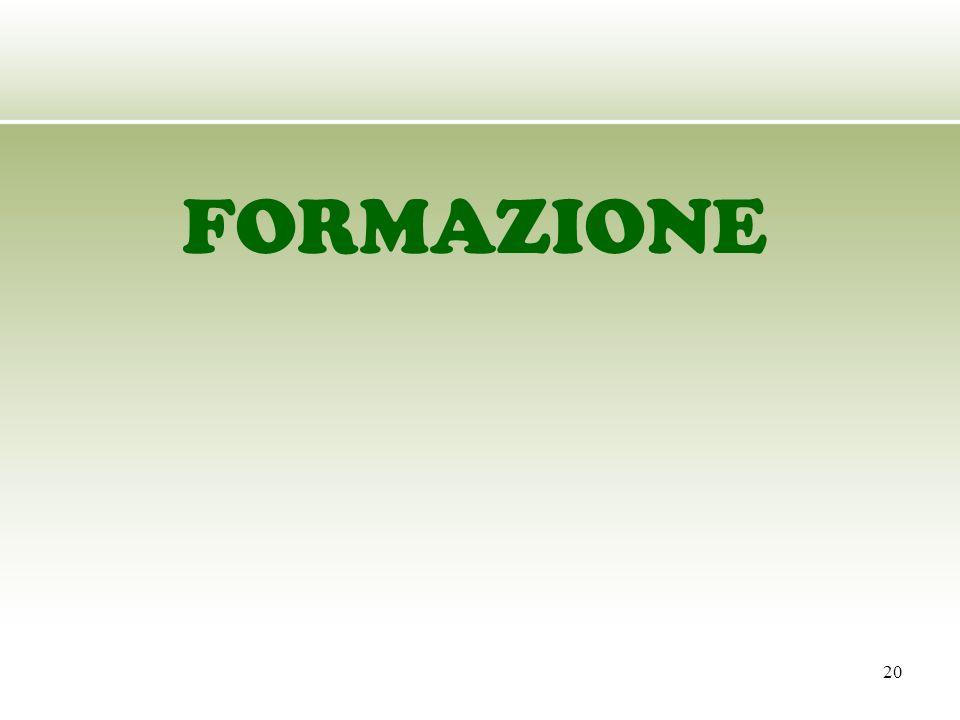 20 FORMAZIONE