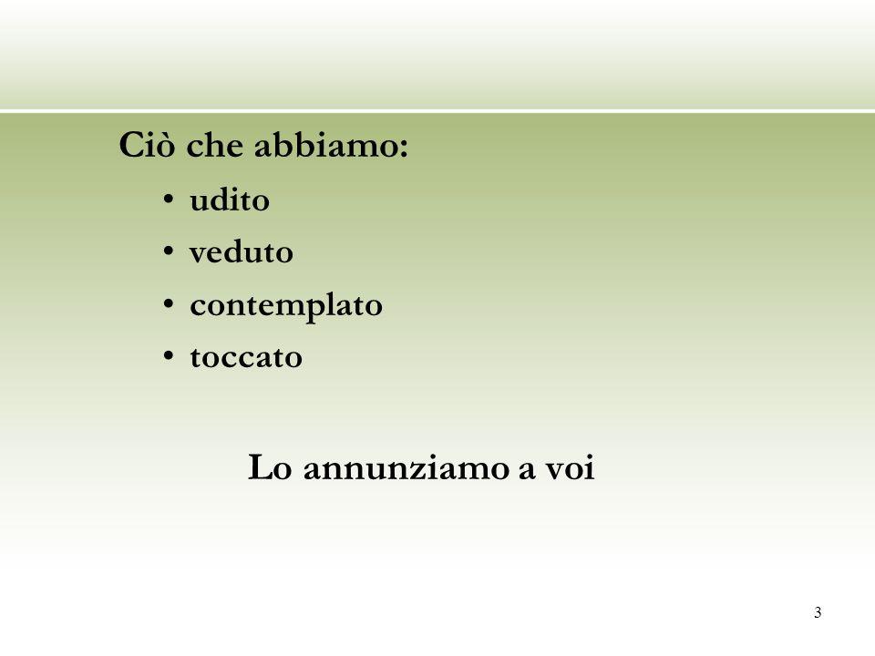 14 La partecipazione alla vita della Chiesa La vocazione non è un qualcosa di personale ma va considerata allinterno del disegno di salvezza di Dio