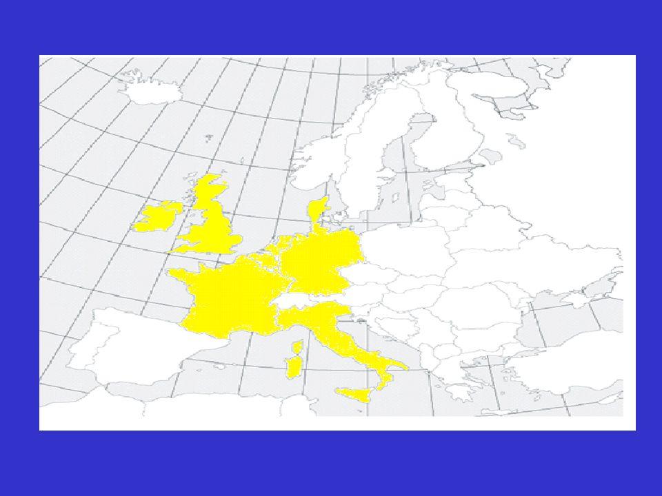 Il 1° Gennaio 2007 altri due paesi dell Europa dell Est, la Bulgaria e la Romania, entrarono a far parte dell UE facendo salire il numero degli Stati membri a ventisette.