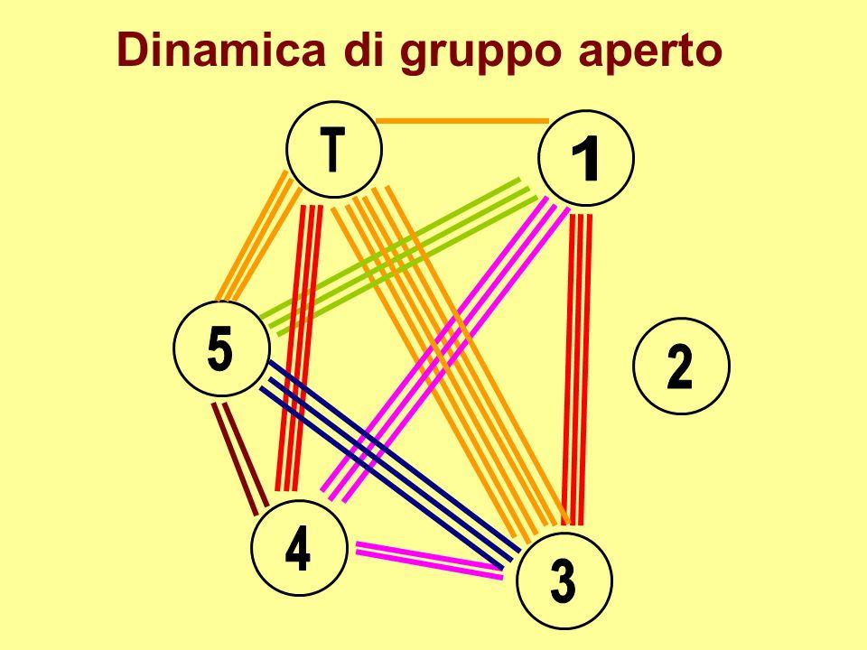 Dinamica di gruppo aperto