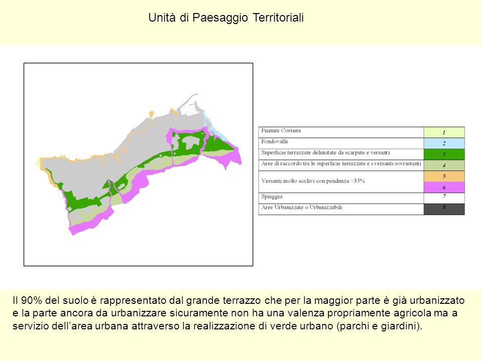 Unità di Paesaggio Territoriali Il 90% del suolo è rappresentato dal grande terrazzo che per la maggior parte è già urbanizzato e la parte ancora da u