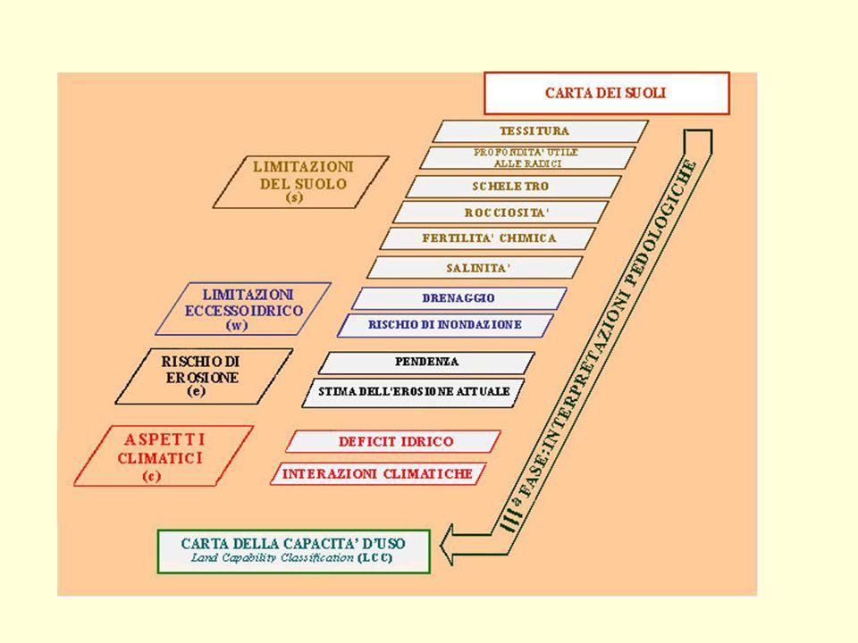IV a Fase: VALUTAZIONE DEL TERRITORIO ( LAND CAPABILITY CLASSIFICATION ) Suoli adatti all agricoltura I - Suoli che presentano pochissimi fattori limitanti il loro uso e che sono quindi utilizzabili per tutte le colture.
