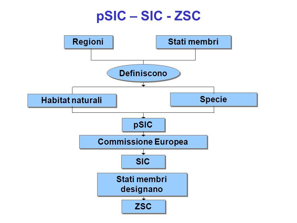 Regioni Commissione Europea Stati membri Habitat naturali Specie pSIC SIC Definiscono Stati membri designano ZSC pSIC – SIC - ZSC