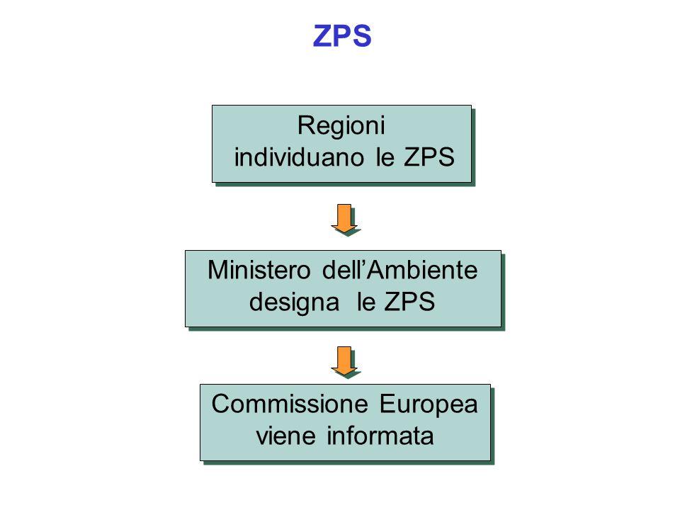ZPS Ministero dellAmbiente designa le ZPS Commissione Europea viene informata Regioni individuano le ZPS