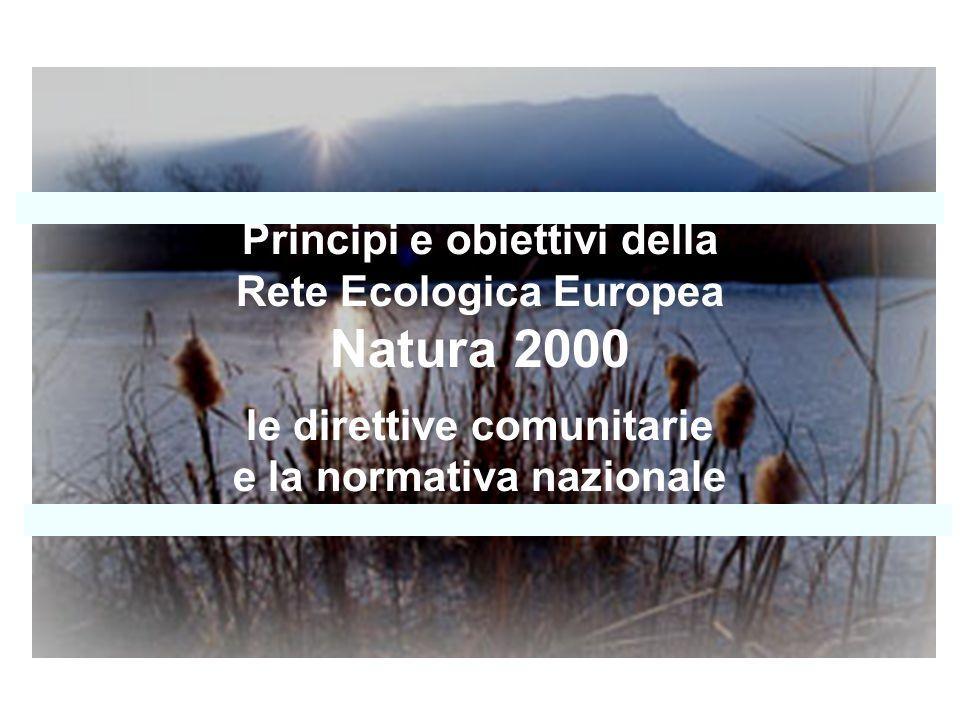 DENSITA URBANA GRADO DI FRAMMENTAZIONE DA INFRASTRUTTURE E DISTURBI tempo