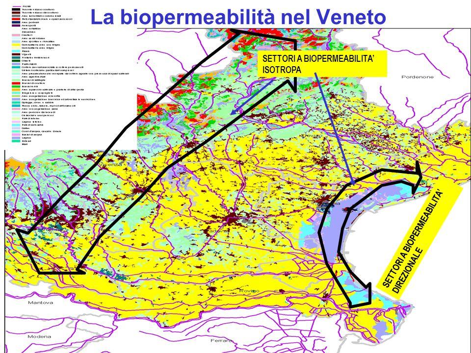 La biopermeabilità nel Veneto SETTORI A BIOPERMEABILITA ISOTROPA SETTORI A BIOPERMEABILITA DIREZIONALE