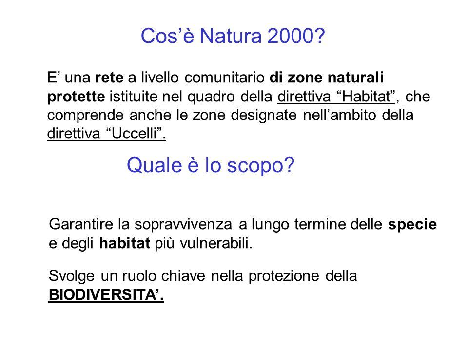 Cosè Natura 2000? E una rete a livello comunitario di zone naturali protette istituite nel quadro della direttiva Habitat, che comprende anche le zone