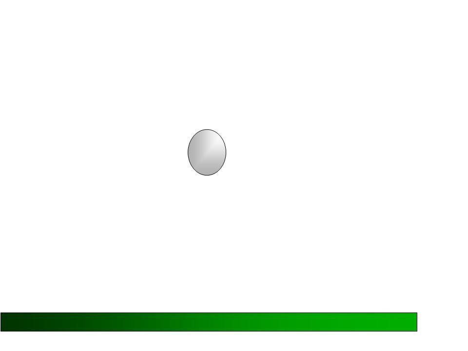 UGUAGLIANZAUGUAGLIANZA CONFRONTOCONFRONTO SOMMASOMMA m 1 = m 2 se m 1 > m 2 se m 1 +m 2 = m 3 se poste alla stessa distanza da m 3 interagiscono con la stessa forza poste alla stessa distanza da m 3 si ha: F 1-3 > F 2-3
