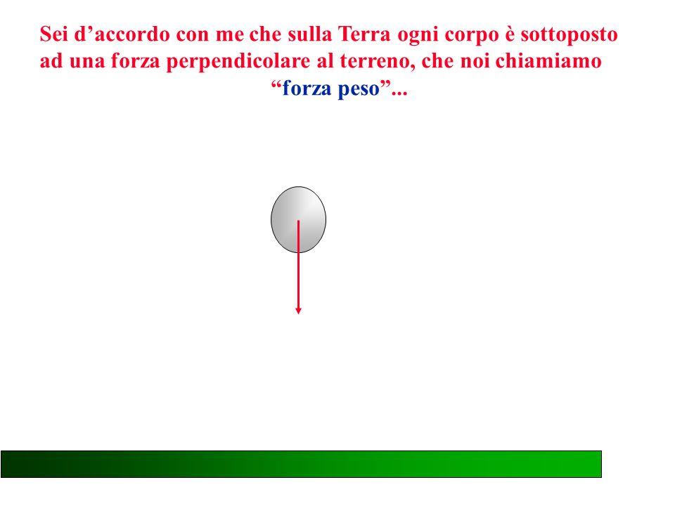 Conoscendo il valore di questo angolo è possibile misurare indirettamente la forza che agisce sulle sfere