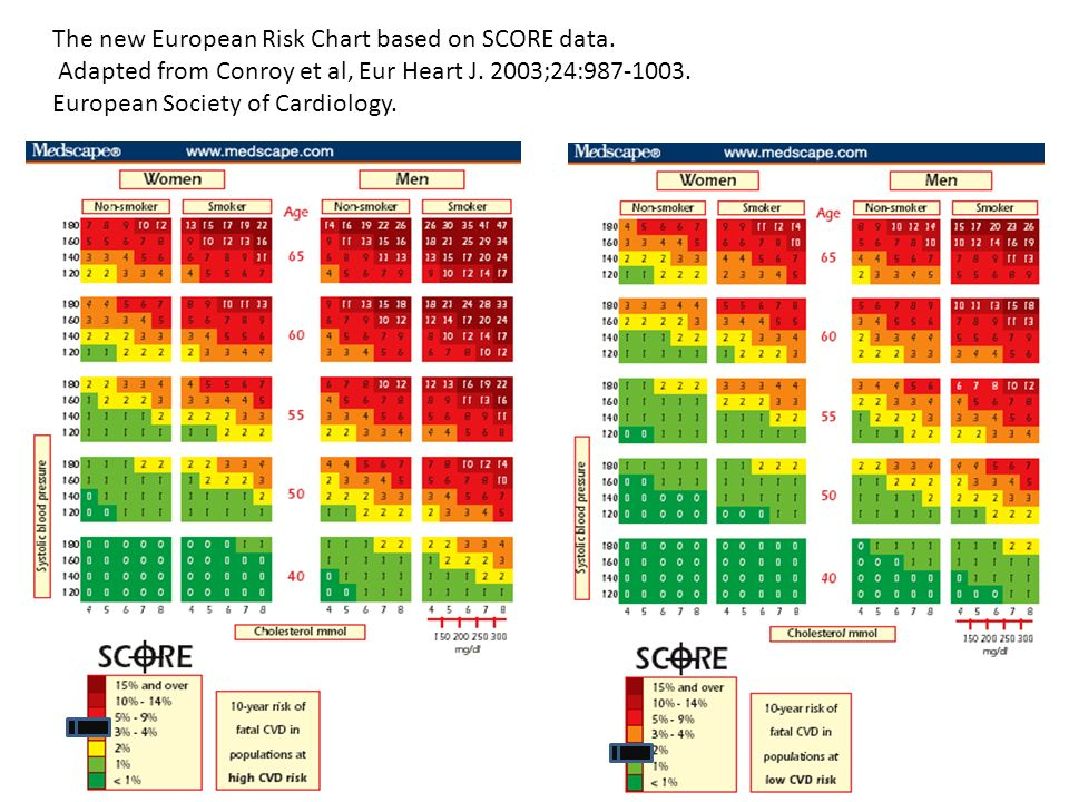 The new European Risk Chart based on SCORE data. Adapted from Conroy et al, Eur Heart J. 2003;24:987-1003. European Society of Cardiology.