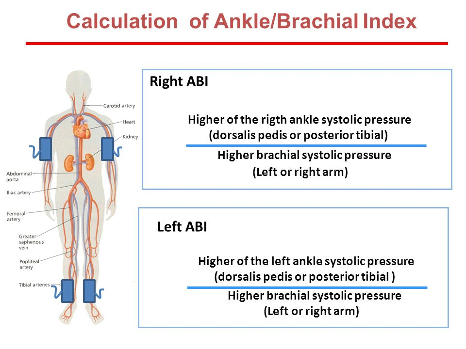Calculation of Ankle/Brachial Index Higher of the rigth ankle systolic pressure (dorsalis pedis or posterior tibial) Higher brachial systolic pressure