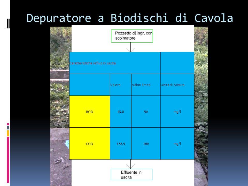 Depuratore a Biodischi di Cavola Caratteristiche refluo in uscita ValoreValori limiteUnità di Misura BOD49.850mg/l COD158.9160mg/l