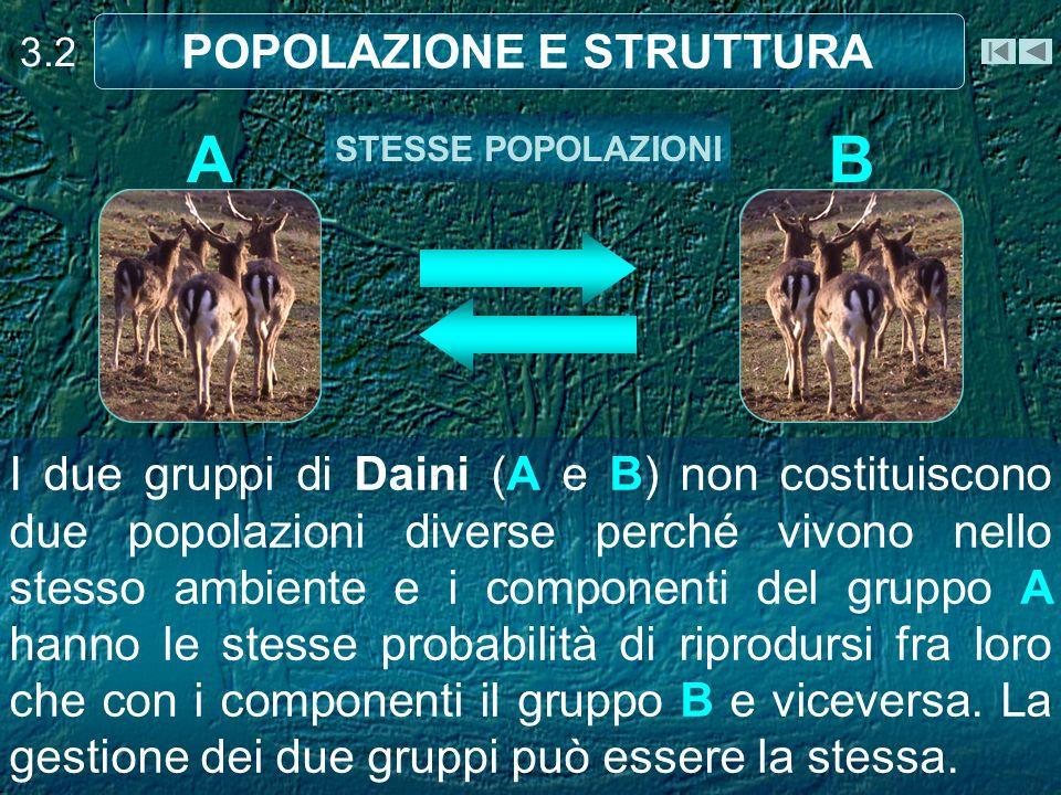 I due gruppi di Daini (A e B) sono due popolazioni diverse perché, a causa di un ostacolo naturale (montagna), i componenti del gruppo A hanno maggiori probabilità di accoppiarsi fra loro anzi che con soggetti il gruppo B e viceversa.