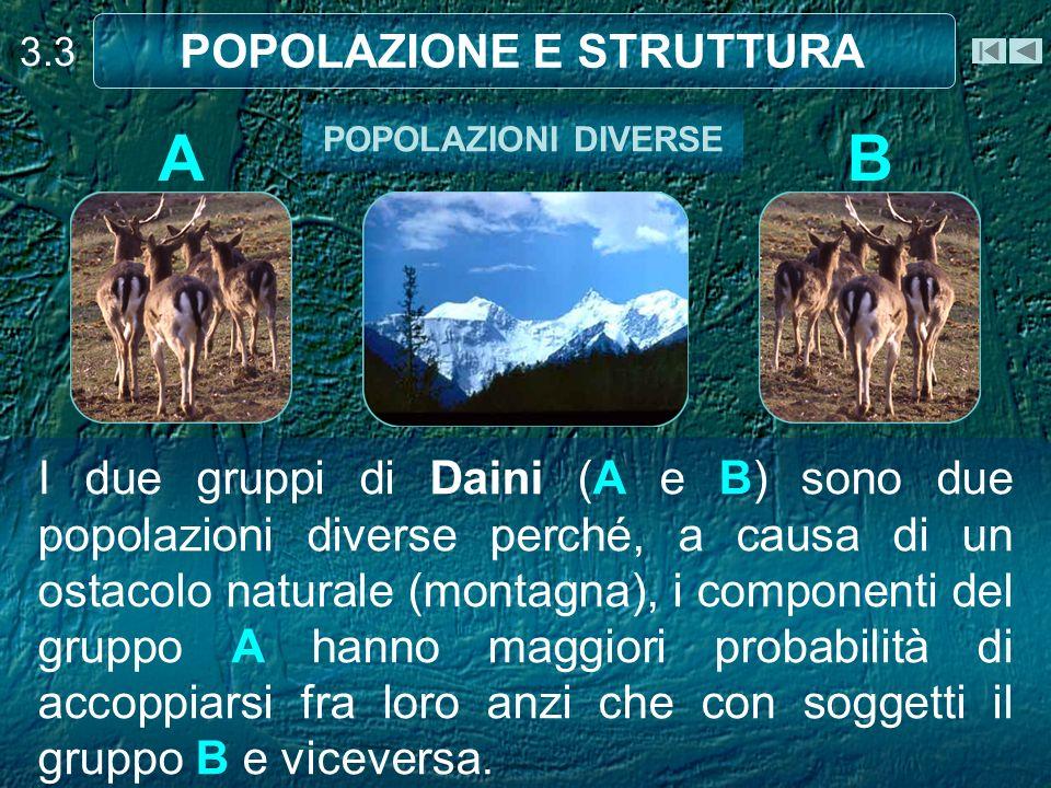 Prevede la conoscenza del numero di animali in funzione della superficie di riferimento.