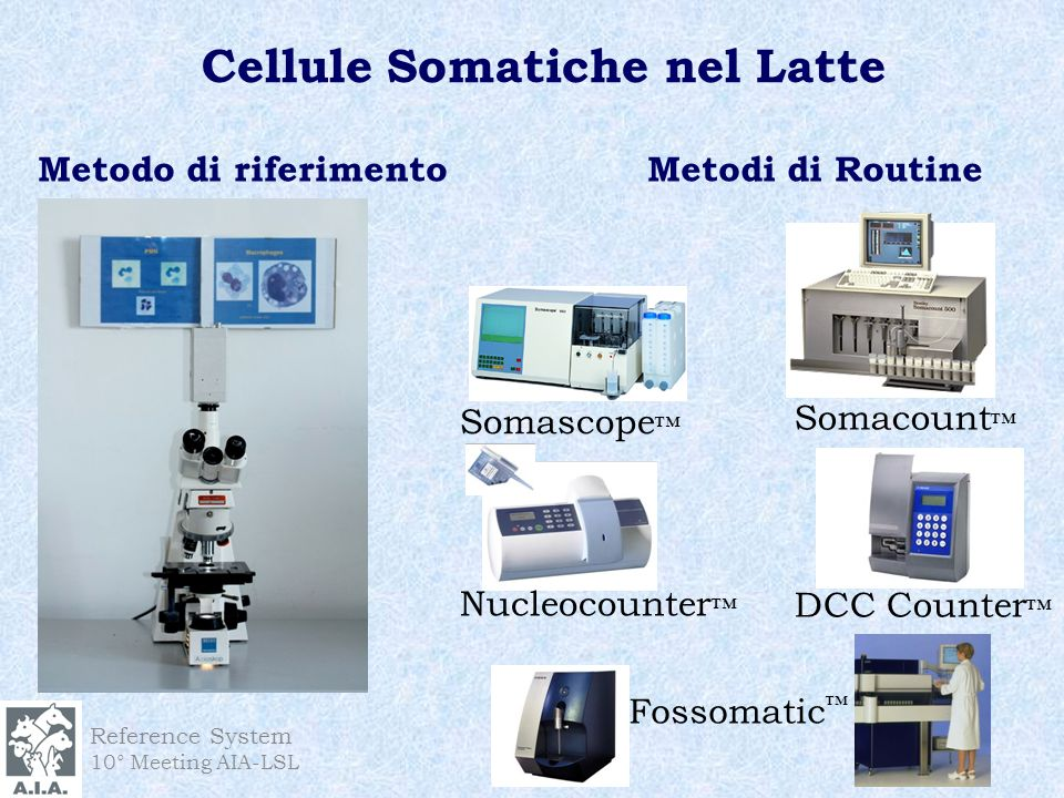 Reference System 10° Meeting AIA-LSL Cellule Somatiche nel Latte Metodo di riferimento Fossomatic Somacount Somascope Nucleocounter DCC Counter Metodi