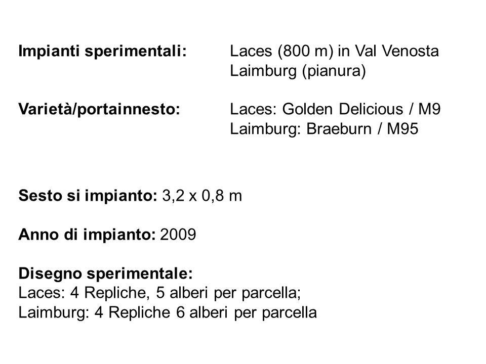 Impianti sperimentali:Laces (800 m) in Val Venosta Laimburg (pianura) Varietà/portainnesto:Laces: Golden Delicious / M9 Laimburg: Braeburn / M95 Sesto