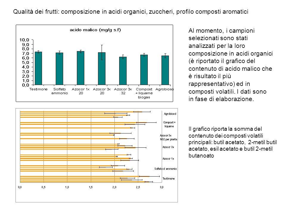 Qualità dei frutti: composizione in acidi organici, zuccheri, profilo composti aromatici Al momento, i campioni selezionati sono stati analizzati per