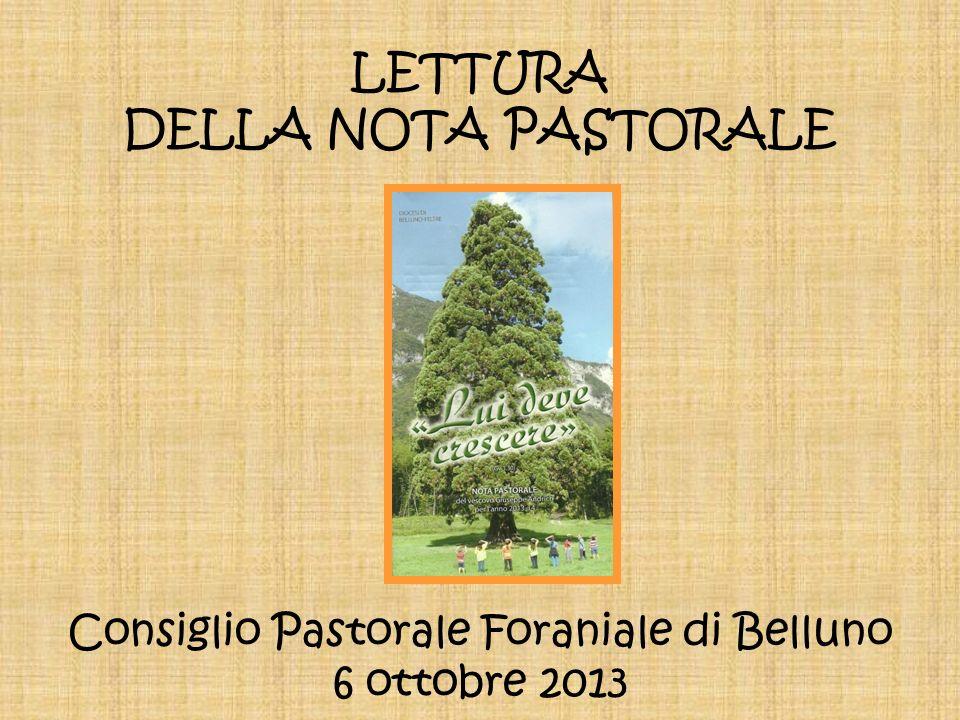 LETTURA DELLA NOTA PASTORALE Consiglio Pastorale Foraniale di Belluno 6 ottobre 2013